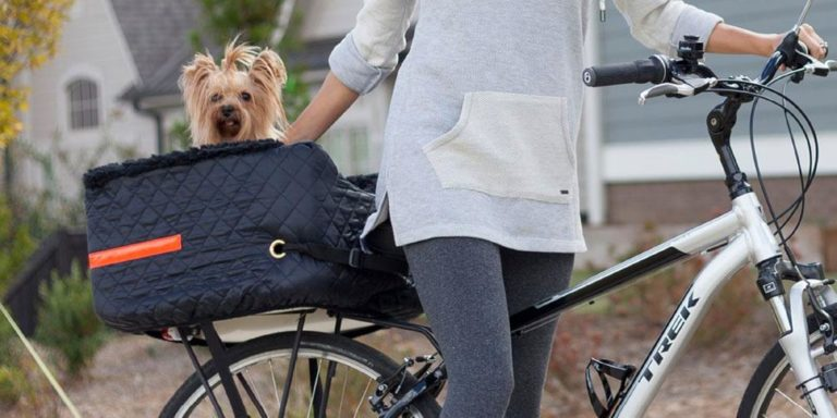 Best Dog Basket For Bike